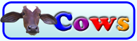 Cows and Elephants